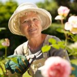 Elderly Care in Springfield VA: Elderly Container Gardening